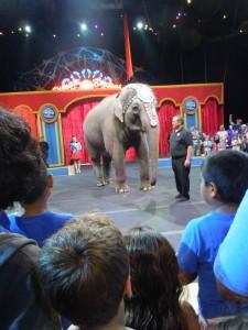 circus-pre-show