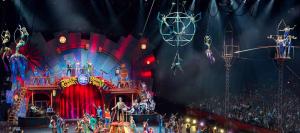 FYD-circus